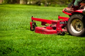 10 Tips For Yard Work Safety Clyde Companies Inc