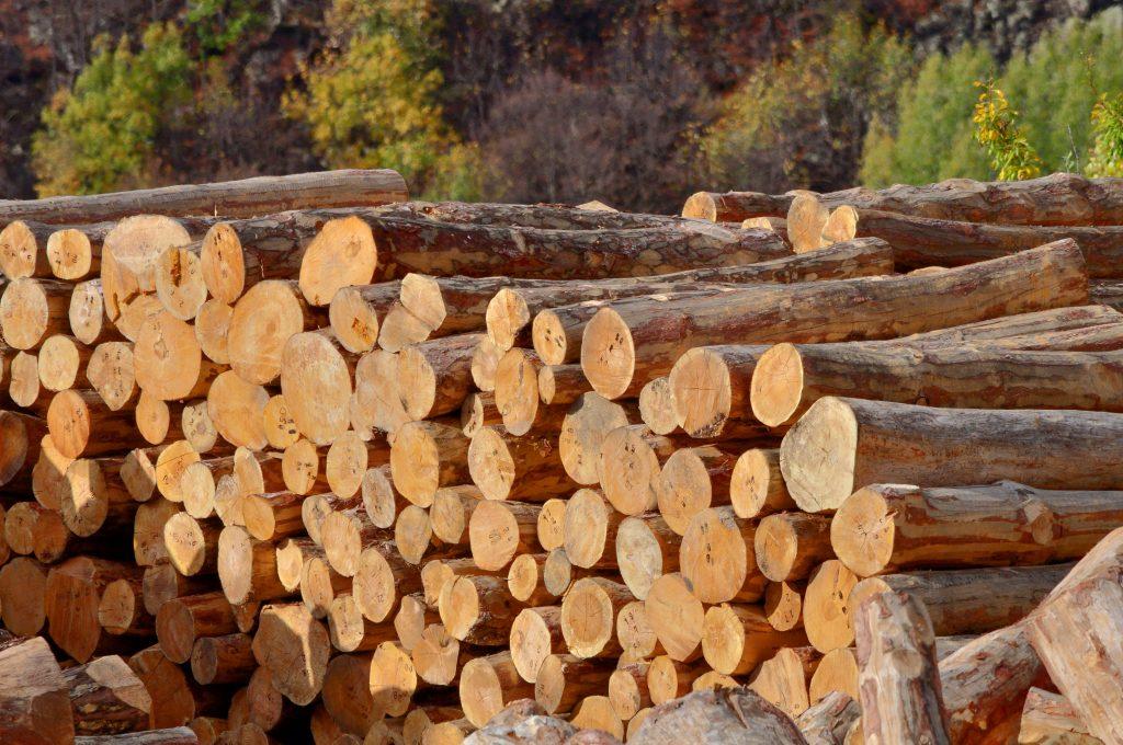 logs-1024x680